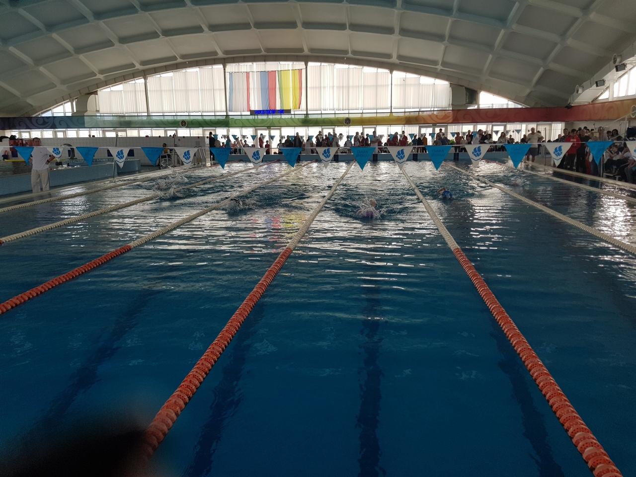 Спортсмены из Донецка стали победителями и призёрами соревнований по плаванию в Крыму