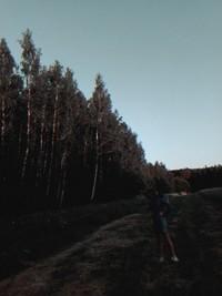 upsarinupsa00