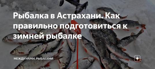 Рыбалка в Астрахани. Как правильно подготовиться к зимней рыбалке