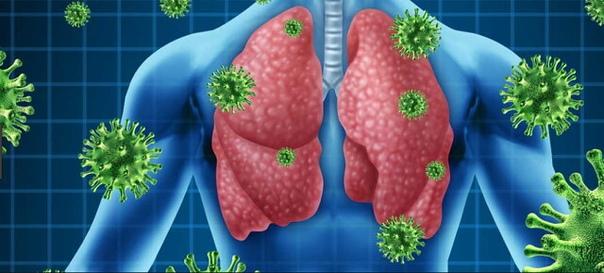 🌿🌿🌿Лечение туберкулеза и бронхиальной астмы медом: эффективные рецепты🌿🌿🌿