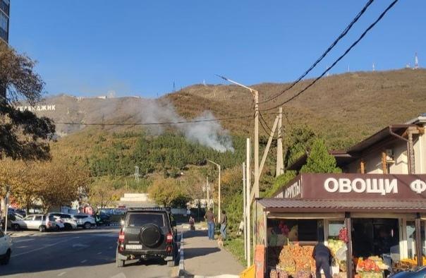 Спасатели четыре часа тушили лесной пожар в Геленд...