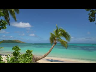 """Blue Lagoon Vista"" 4K 2 Hour Nature Scene_ Tropical Beach, Palm Tree, Blue Sky"