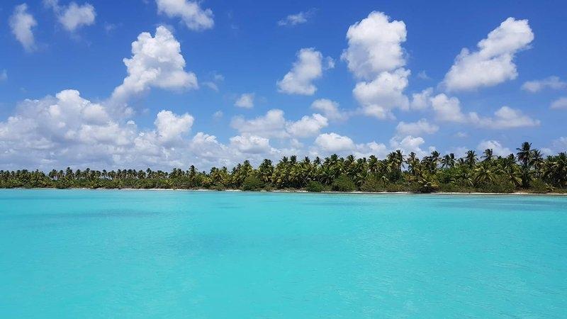Доминикана, жемчужина Карибского бассейна, изображение №8