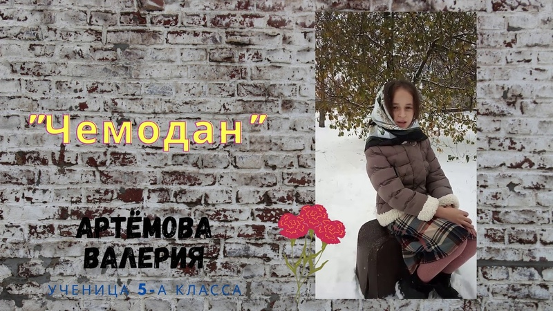ГУ ЛНР ЛУВО Барвинок Артёмова Валерия Чемодан 5 А