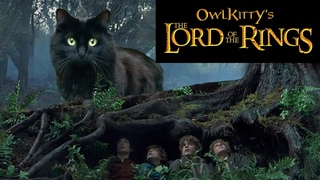 Lord of the Rings -- starring my cat OwlKitty