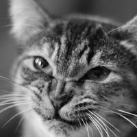 Фотография профиля Валентины Микаевой ВКонтакте