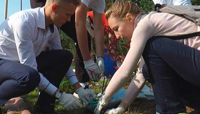Одной из площадок акции «Наш лес. Посади свое дерево» стала территория у Дмитровского лицея №4