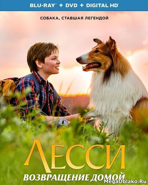 Лесси. Возвращение домой / Lassie - Eine abenteuerliche Reise (2020/BDRip/HDRip)