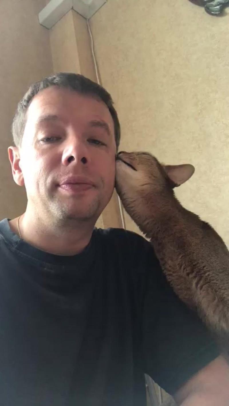 Лучший ли друг человека - кошка!?