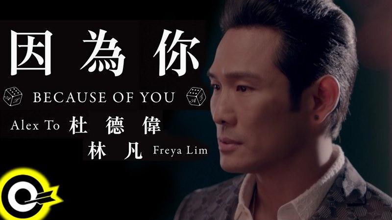 杜德偉 Alex To 凡 Freya Lim 因為你 Because of you Official Music Video HD 三立都會台「就是要你愛上我」