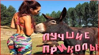 ЛУЧШИЕ ПРИКОЛЫ 2019 Октябрь #3 МУЖИКИ ЖГУТ.