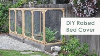 Как защитить сад от животных