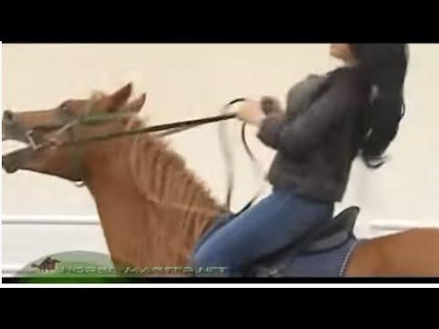 Ali Al Ameri Haifa Wahby Interview ponyboy